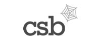 csb internet website design & development